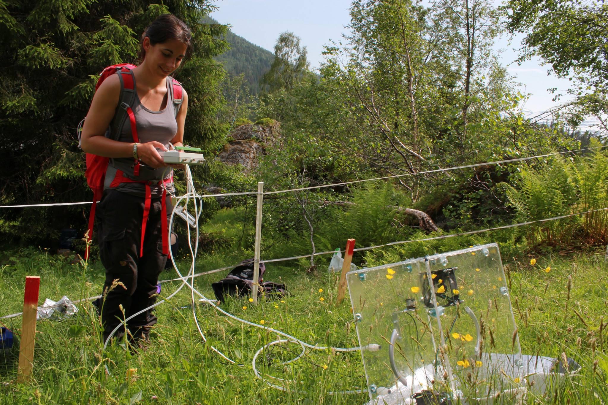 CO2 flux measurement