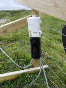 Klimaloggerene er satt opp og sikret fra gnagere og sau.