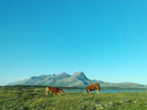Hver dag fikk vi flotte utsikter imens vi kjørte langs øyen vi bor på. Dette er favoritten
